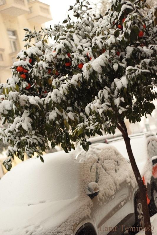 snow_saloniki_lana_temina-IMG_7697-1