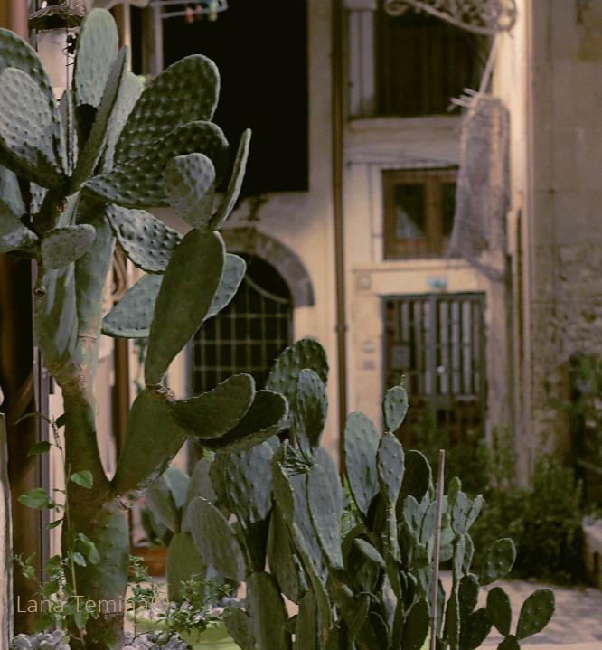 2_siracuse_sicily_Italy_